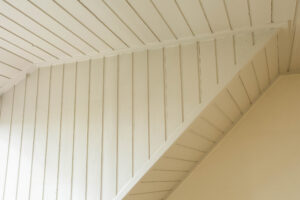Repainting Lath and Plaster
